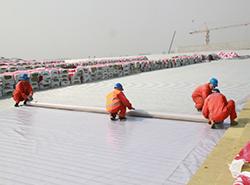 热塑性聚烯烃(TPO)预铺防水卷材