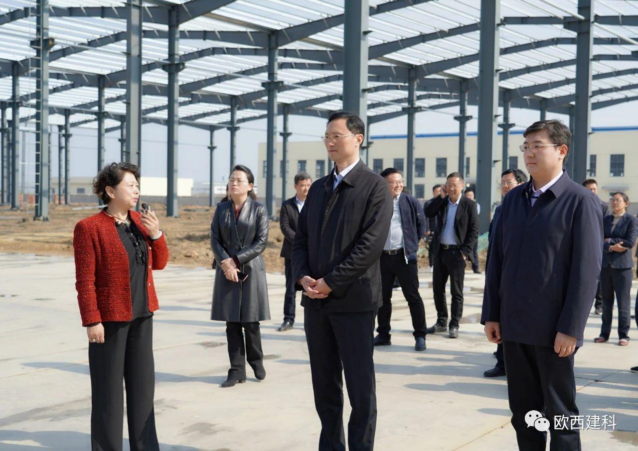 洪泽区委书记张冲林率队调研欧西盾新型防水卷材生产项目