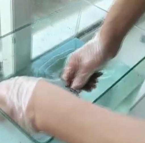 TWE704平面冷刮涂型非固化持粘涂料